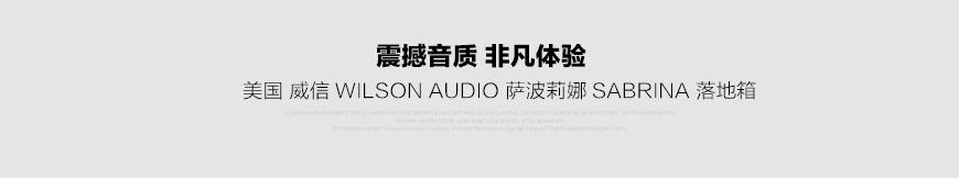 威信萨波莉娜,Wilson Audio sabrina,威信落地箱