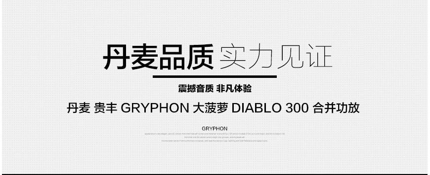 贵丰大菠萝,Gryphon Diablo 300,贵丰合并功放