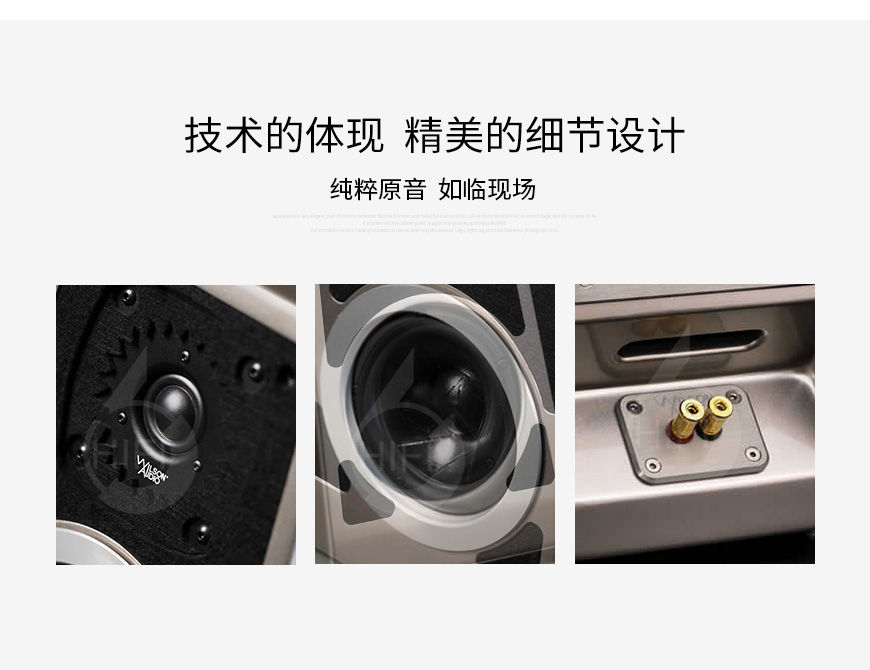 威信Tune Tot,Wilson Audio Tune Tot,威信音箱