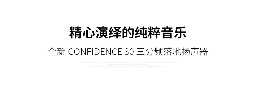 丹麦 丹拿 Dynaudio 信心系列 Confidence 30 落地箱,丹拿 信心系列 落地箱,丹麦 Dynaudio Confidence 30,丹麦 丹拿